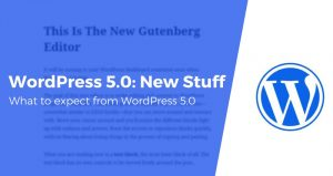 WordPress 5.0 Theme