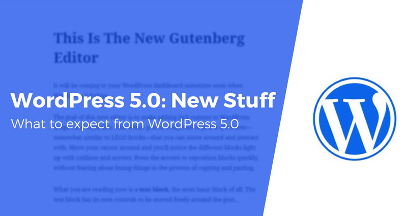WordPress 5.0 Theme